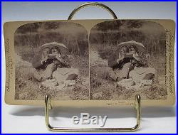 Antique (34) BLACK AMERICANA Stereoview Cards & Stereo Viewer Stereoscope #1 yqz