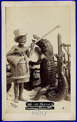 Bizarre Surrealistic Black Child Broom Guitar Alligator Crocodile 1892 Photo Fla