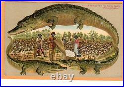 Black American Postcard Langsdorf Alligator Border Picking Cotton