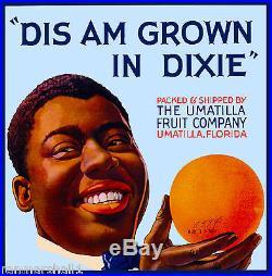 Umatilla Florida Dis Am Grown in Dixie Orange Citrus Fruit Crate Label Print